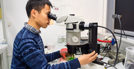 PhD student Van-Cuong Pham in the lab | Photo: Kevin Ryl
