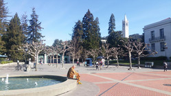Die University of California, Berkeley. Foto: U. Lucke.