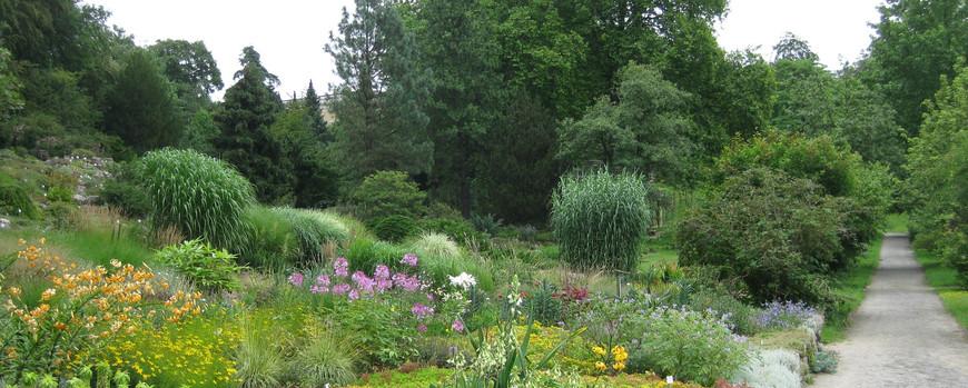 Freilandanlagen Unser Garten Botanischer Garten Der Universitat Potsdam Universitat Potsdam
