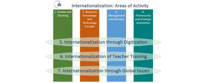 "Graphic on the ""Internationalization of Universities"" re-audit"