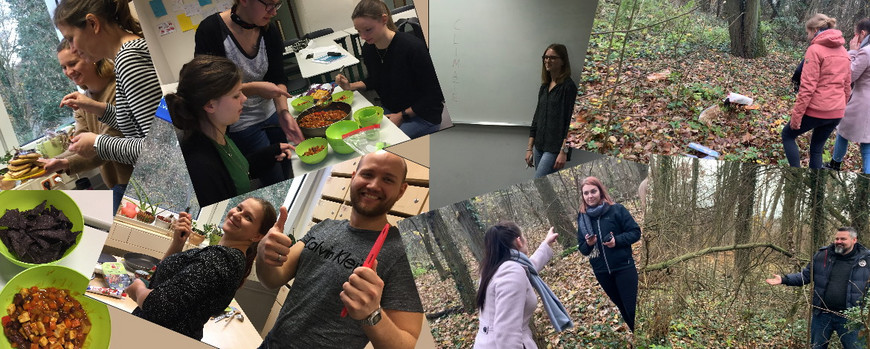 Collage pictures from the tasks