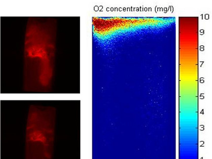 High-resolution imaging in aggregated soils: Dynamics of oxygen, pH and water content induced interfaces